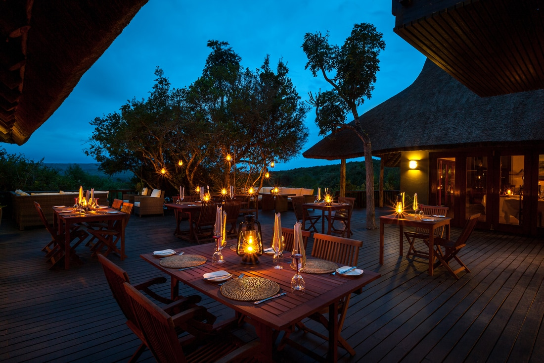 Luxury Eastern Cape Safari